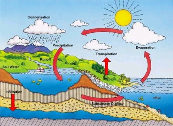 Water Cycle Diagram Class 7 Brainly