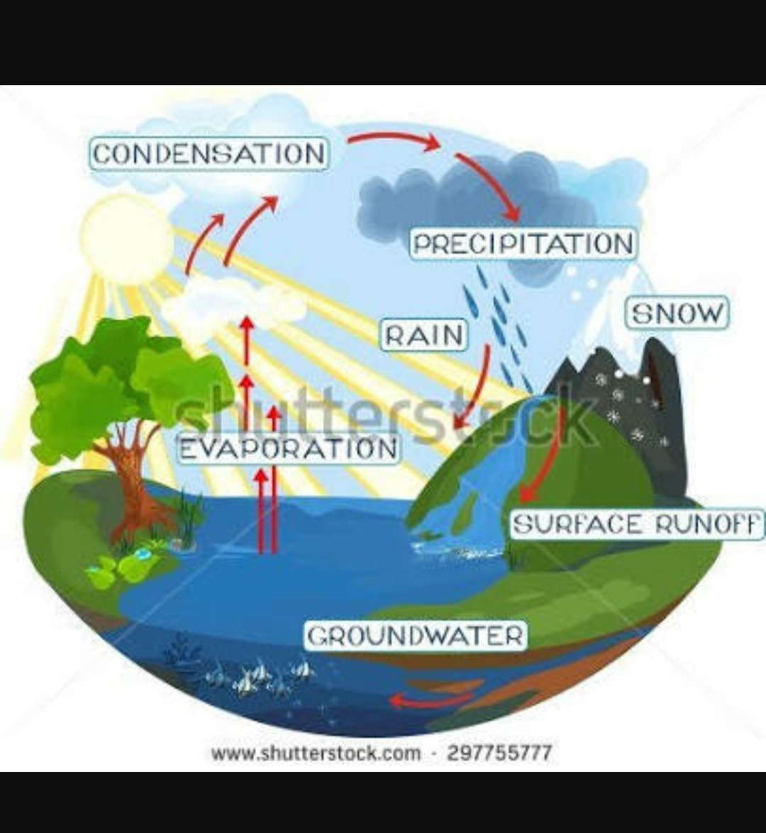 How to make water cycle brainly download jpg ccuart Choice Image