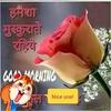 maheshgupta365