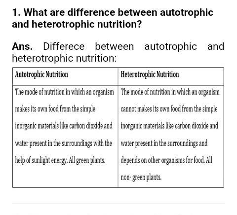 Differentiate Between Autotrophic And Heterotrophic Nutrition Nutritionwalls