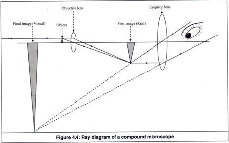 Draw A Labelled Ray Diagram Of Compound Microscope And Explain Its