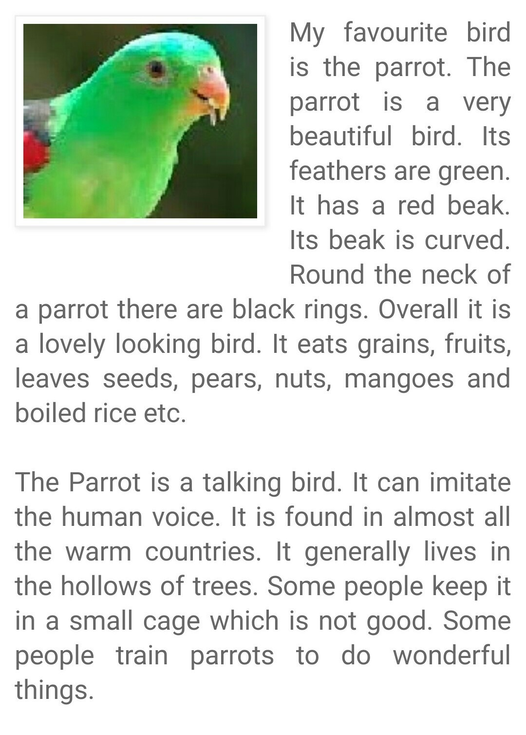 essay on parrot in bengali