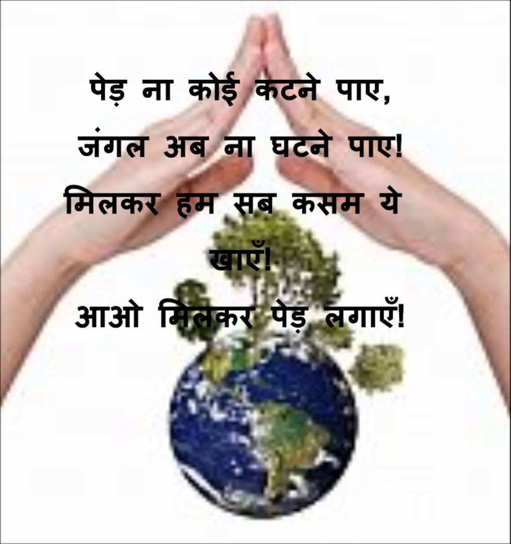 save trees save nature essay How you can save paper save paper, save money, save forests pdf 75 kb when you work with wwf to build a future in which humans live in harmony with nature.