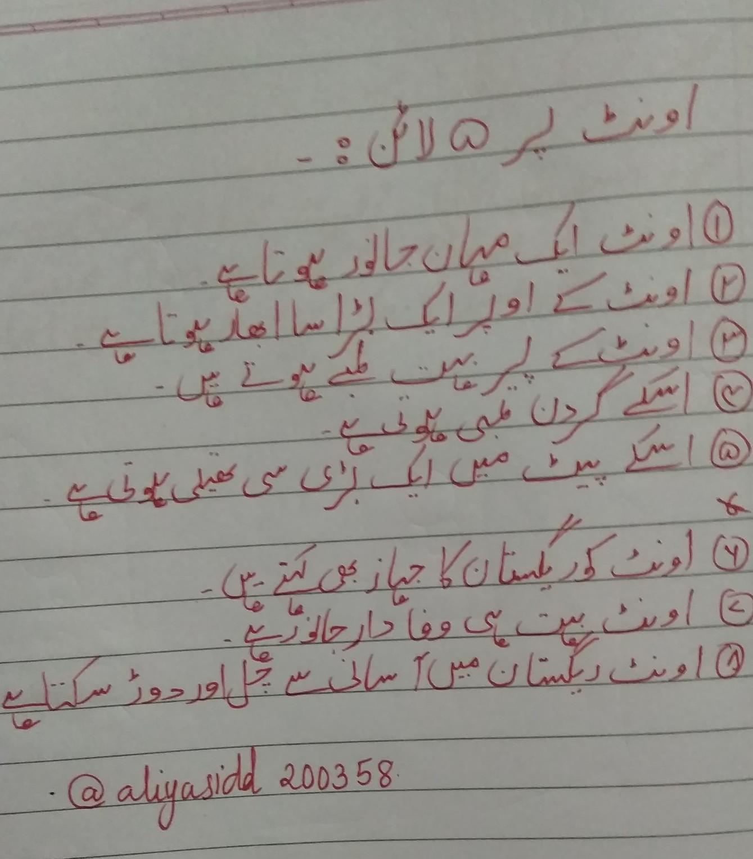 Five sentence about camel in urdu Urdu - Brainly in