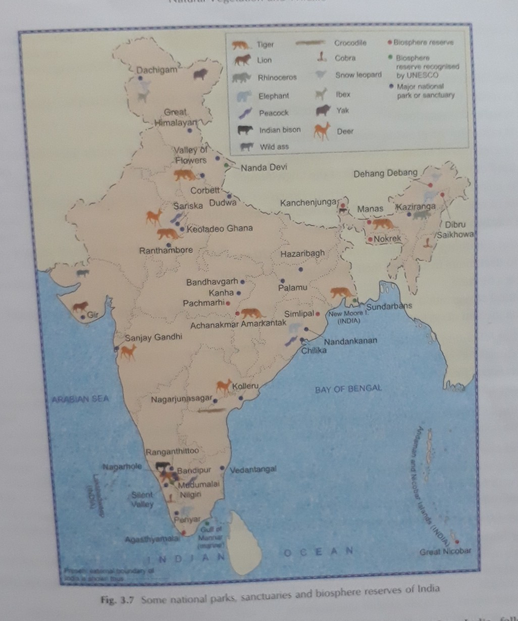 National parks in india in hindi with map - inly.in on india map hinduism, india map english, india map history, india map urdu, india map maharashtra, india map rajasthan, india map punjabi, india map delhi, india map states and rivers, india map mumbai, india map bangla, india map state names, india cities map, india map asia, india map art, india map in tamil, india map indo-gangetic plain, india map nepal, india map geography, india map gujarat,