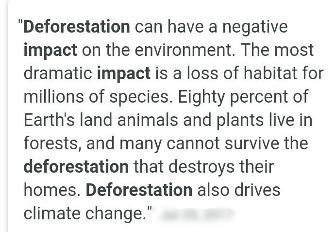 ill effects of deforestation