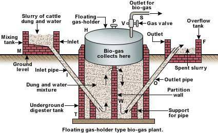 explain with diagram biogas plant - Brainly.in