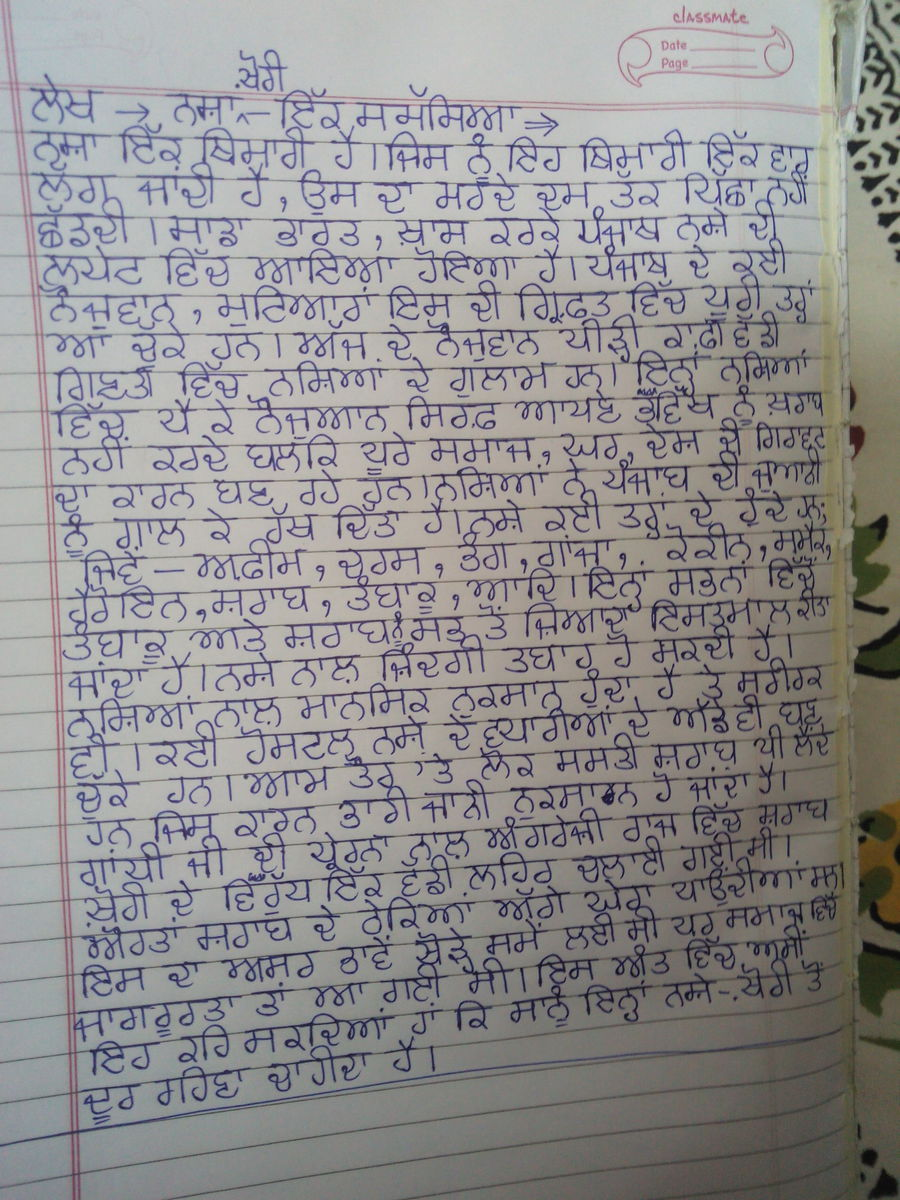 essay on nasha khori in punjabi language about words   jpg