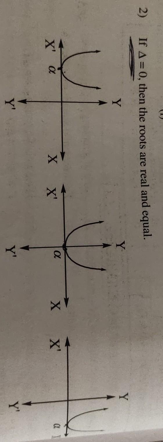 quadratic function quiz   Algebra I Quiz - Quizizz