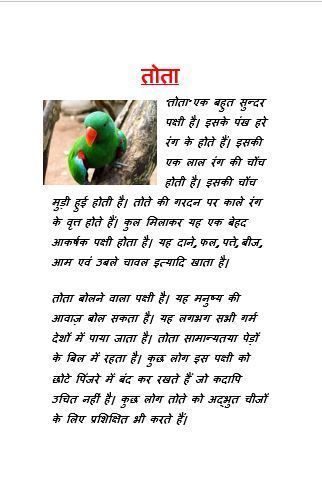 an essay on parrot in hindi in  jpg