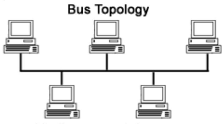 what is bus topology - Brainly in