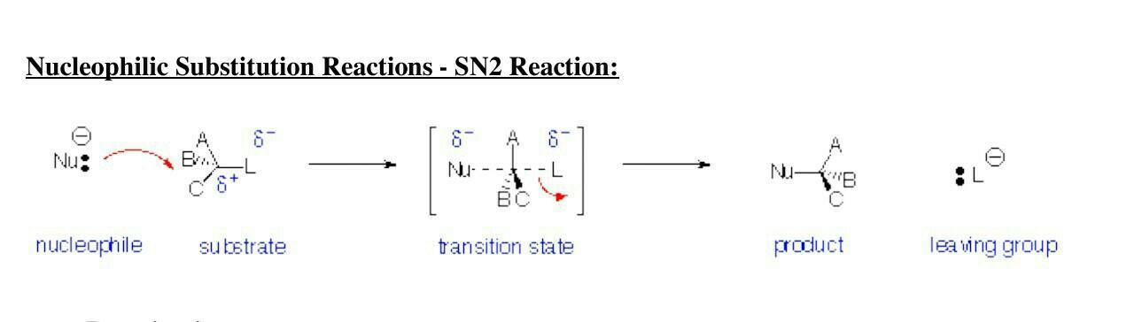 SN1 reactions examples - Brainly in