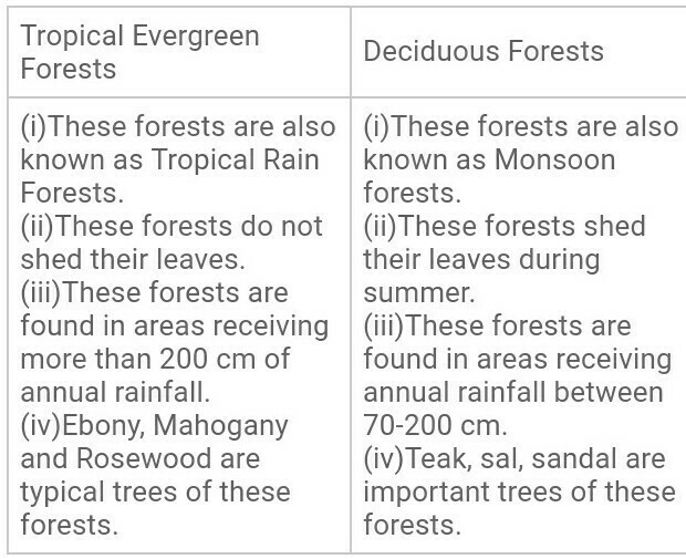 distinguish between tropical evergreen and deciduous forests