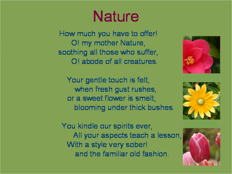 our beautiful nature essay