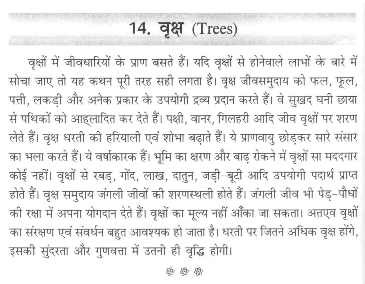 Tree short essay