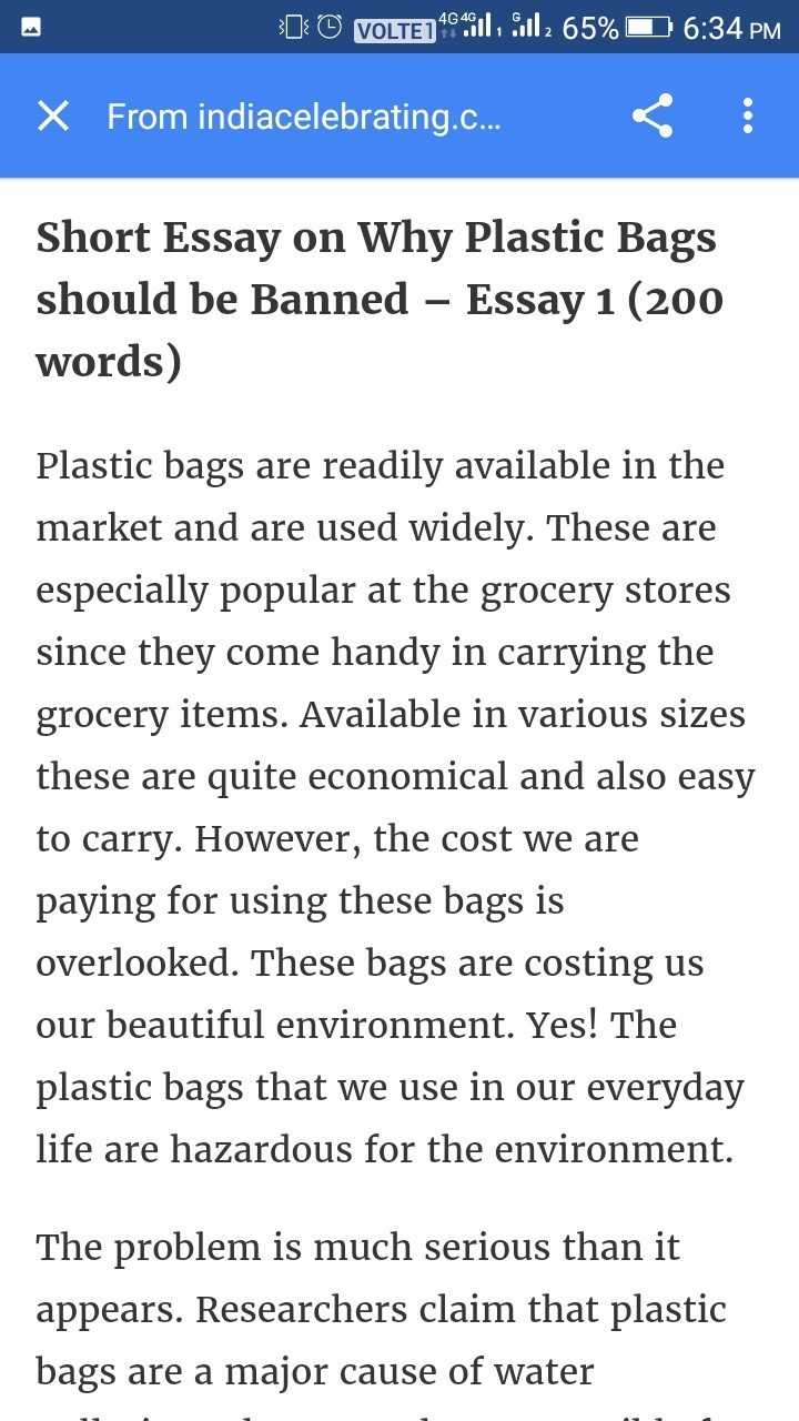 essay about plastic bags