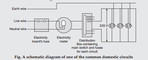List four important features of domestic electric circuits. Draw a ...