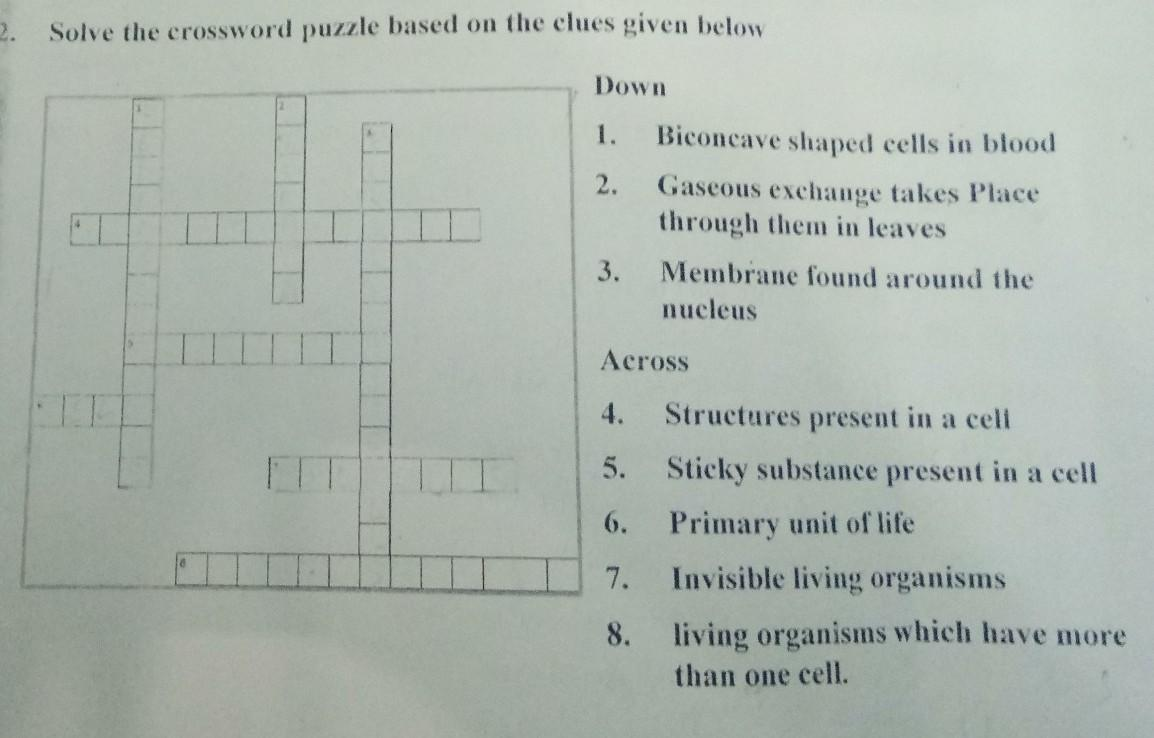 Solve The Crossword Puzzle Based On The Clues Given Below Down 1 Biconcave Shaped Cells In Blood 2 Brainly In