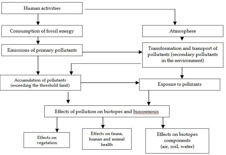 Flow Chart That Depicts Causes And Methods Of Control Of Soil