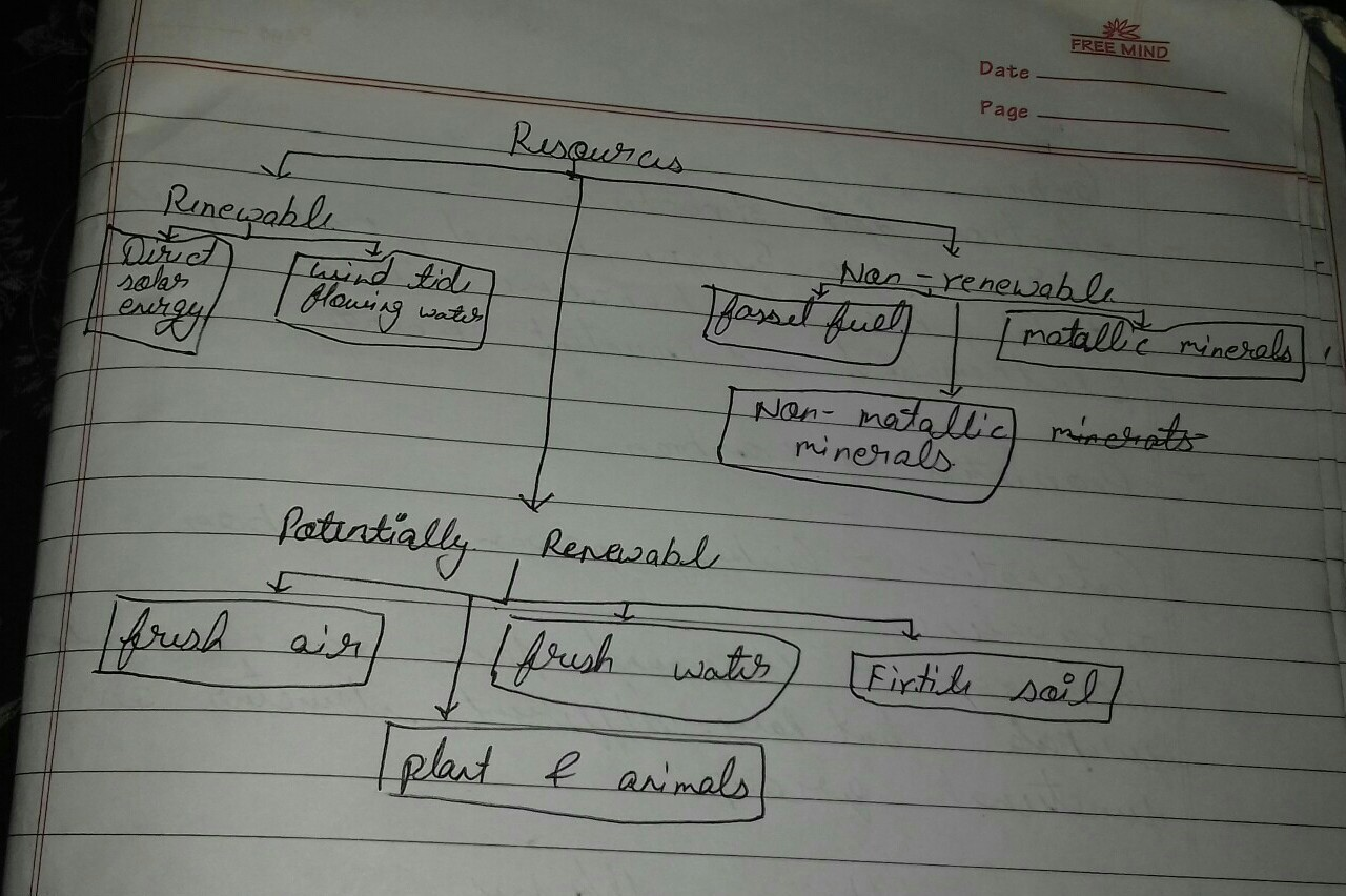 draw a flow chart to show classification of resources with ...