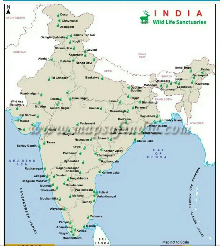 On The Outline Map Of India Show Rivers Lakes Sanctuaries Of India
