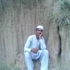 Alimial