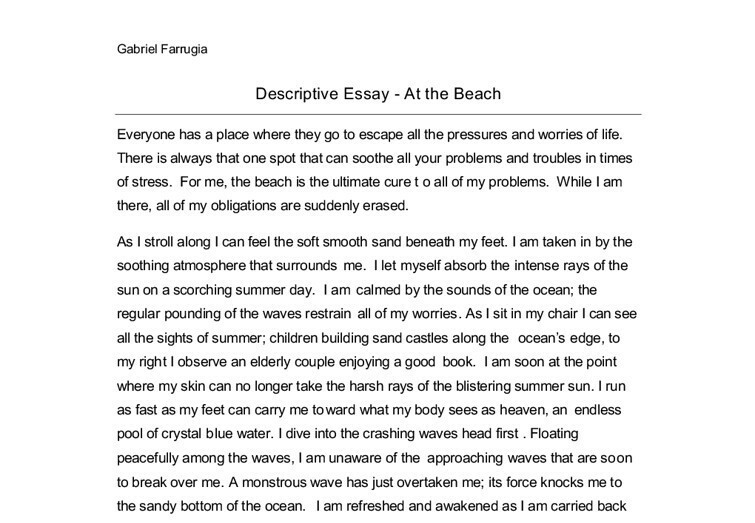 one day at the beach essay