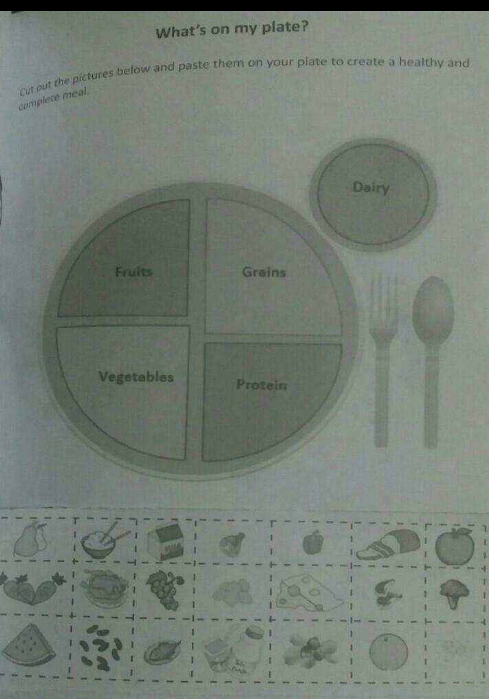 fill the plate sections  with the help of things below