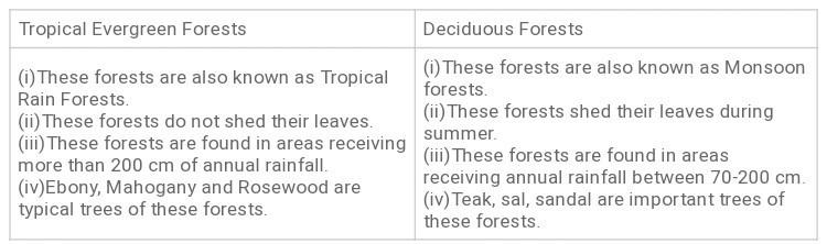 Difference Between Tropical Evergreen Forest And Tropical Deciduous Forest Brainly In Why do trees in tropical evergreen forest do not shed their leaves together? difference between tropical evergreen