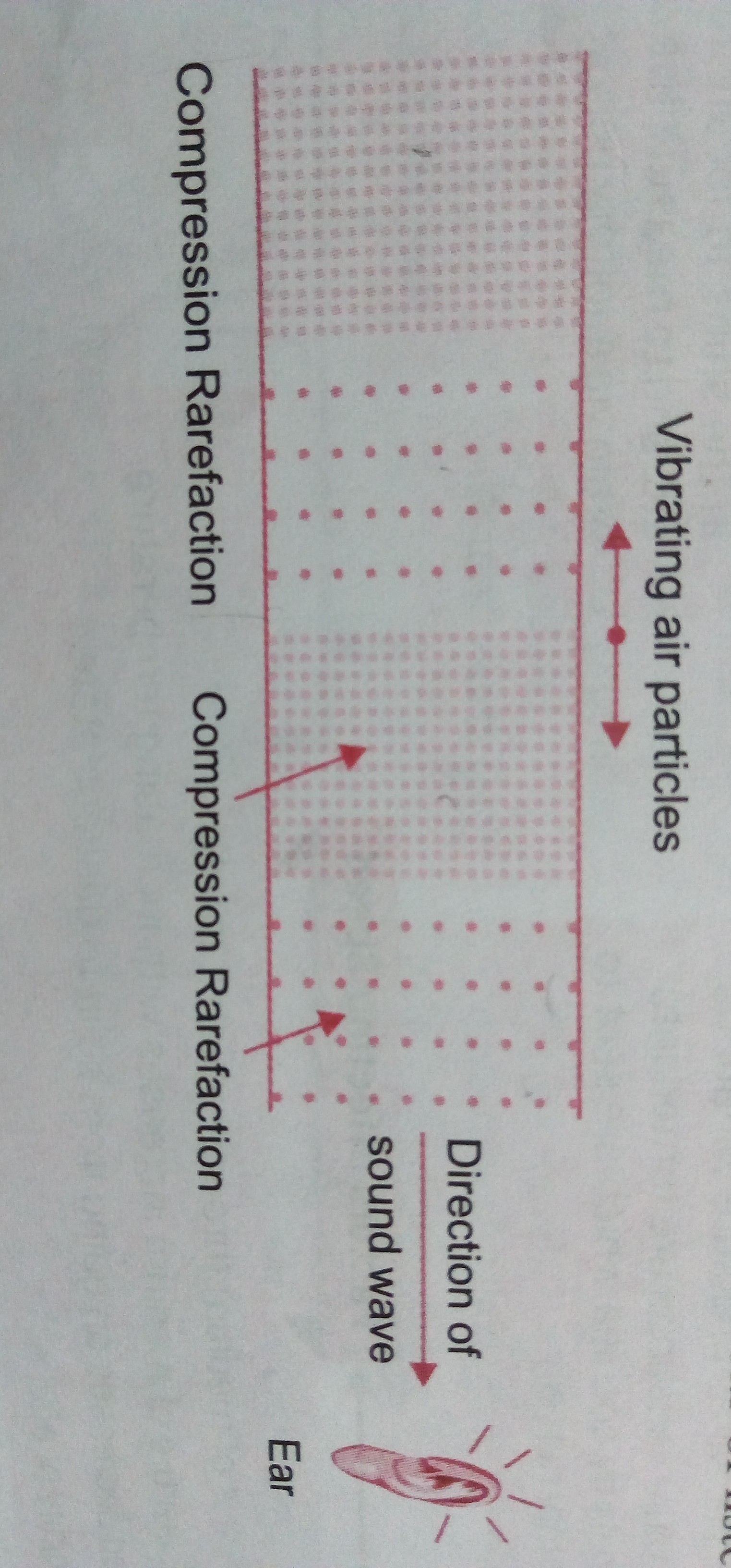 explain how sound is produced and detected through a diagram