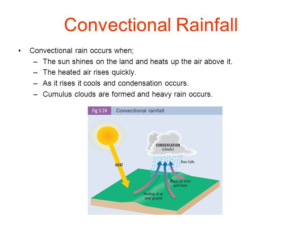 Draw A Labelled Diagram Of Conventional Rainfall Brainly