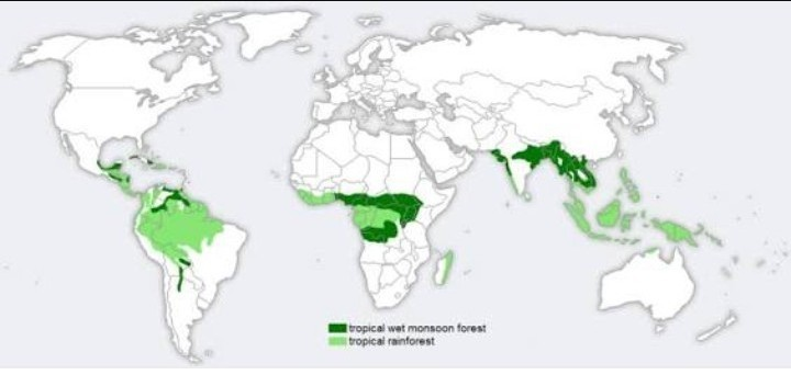Show Monsoon Forests In World Map Brainly In